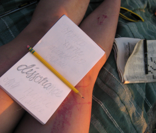 "sketchbook balanced on knees of bare legs on a picnic blanket, with the word ""dissonance"" partly written on the open page"
