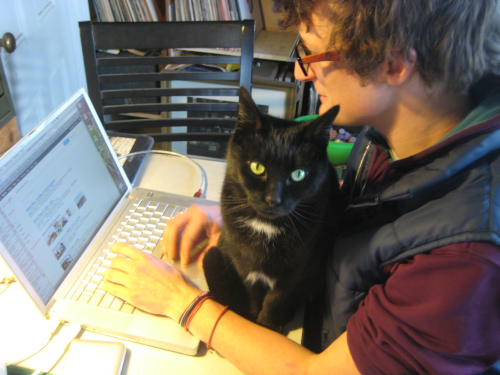 a person trying to work at a computer with a cat sitting between them and the computer